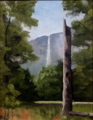 The Distant Falls